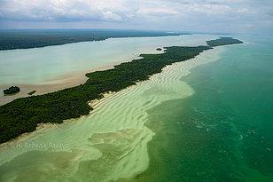 Isla Tamalcab